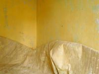Zimmer Nr 7_Nohra_Leonie Felle