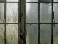 Fenster zum Hof_Nohra_Leonie Felle